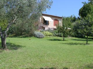 Vacation home near Florence, car is not required - San Casciano in Val di Pesa vacation rentals