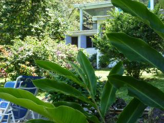 T2 au coeur d'un jardin tropical - Pointe Michel vacation rentals