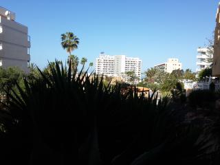 Studio in Playa de Las Americas - Playa de las Americas vacation rentals