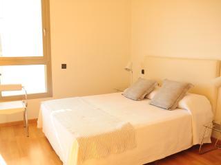 Casa Katia,luxury apartment PaseoMaritimo/Botafoch - Roca Llisa vacation rentals