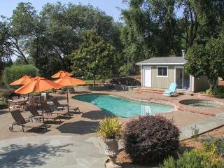 Spacious Home in the Heart of the Wineries - Healdsburg vacation rentals