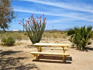 Cozy Cottage with Internet Access and Hot Tub - Joshua Tree vacation rentals