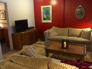 SNOW RETREAT! SKI-SLED-SNOW SHOE-XCOUNTRY-PETS? - Incline Village vacation rentals