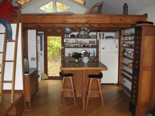 Woodland Valley Retreat-beautiful mountain cottage - Phoenicia vacation rentals