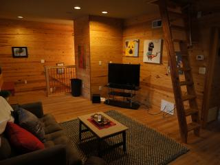 Guest Apt. in the heart of downtown Greenville - Pickens vacation rentals