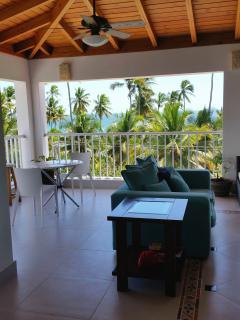 2 bedroom Apartment with Internet Access in Juan Dolio - Juan Dolio vacation rentals