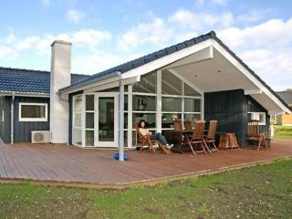 Loddenhøj ~ RA18100 - Ebberup vacation rentals