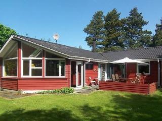 Skaven Strand ~ RA16960 - Ringkoebing-Skjern Municipality vacation rentals
