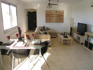 Beautiful 2 bedroom Apartment in Alethriko with Internet Access - Alethriko vacation rentals
