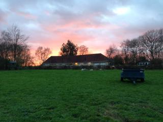 Benson's Rest,  6 acres in the garden of England - Cranbrook vacation rentals
