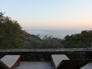 Lavender House - Glossa vacation rentals