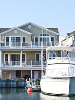Yacht Avenue - Double Unit 122358 - Image 1 - Cape May - rentals