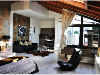 My home in Florence/Luxury Apartment - Florence vacation rentals
