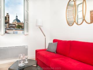 CARRE ST PIERRE DÔME Citycenter - Vieille-Toulouse vacation rentals