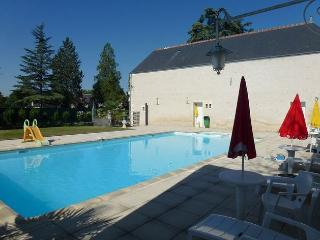 Lovely Loire Valley apartment with 2 bedrooms and views across a green garden and shared pool - Chitenay vacation rentals