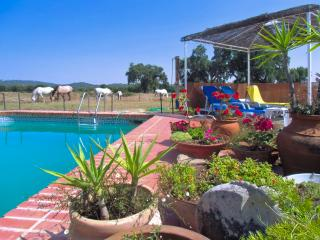 Gorgeous Portuguese cottage near Portalegre with pool, tennis, horses and stunning country views - Alentejo vacation rentals