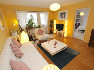 Lovely living room near Arlanda Airport - Stockholm vacation rentals