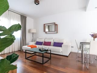 Luxury apartment in city center - Barcelona vacation rentals