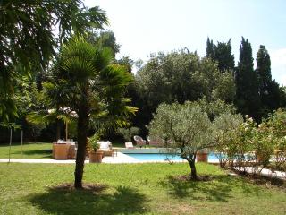 Charming property near Saint Remy de Provence - Saint-Remy-de-Provence vacation rentals