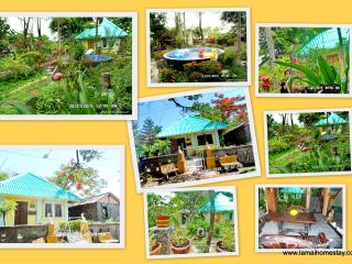 Eco Cottage room only  / meals optional extra - Khao Yai National Park vacation rentals