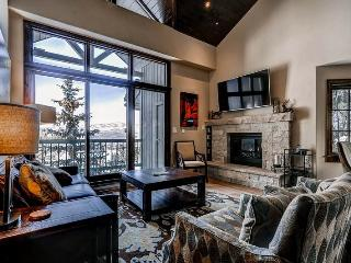 Borders Lodge - Lower 213 - Beaver Creek vacation rentals