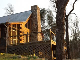 Hunters' Lodge, on the bluff of Lookout Mtn. - Chattanooga vacation rentals