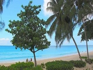 RIDGEVIEW ESTATES LUXURY TOWNHOUSE - Oistins vacation rentals