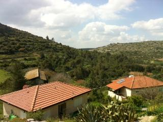 Beautiful country home near jerusalem - Jerusalem District vacation rentals