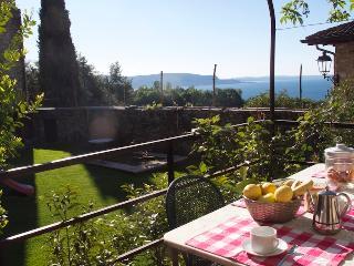 Mimosa restored lake view peacefull apartment - Gardone Riviera vacation rentals