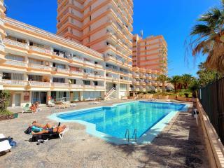 apartament with 1 bedroom - Arona vacation rentals