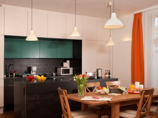 Spacious Apartment with garden Ap9 - Vienna vacation rentals