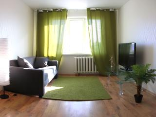 Nice Condo with Internet Access and A/C - Omsk vacation rentals