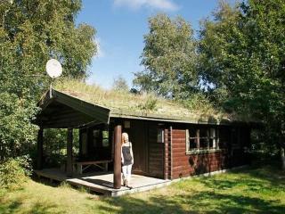 Læsø/Vesterø ~ RA18763 - Laeso Island vacation rentals