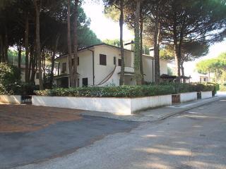 Villa Marisa ~ RA33589 - Emilia-Romagna vacation rentals