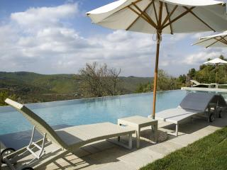 Il Torrino - Castellina In Chianti vacation rentals
