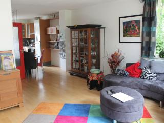 Nice Condo with Internet Access and Dishwasher - Wageningen vacation rentals