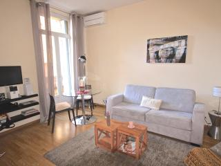 Central Cannes - 1 BR apartment ideal for vacation - Cannes vacation rentals