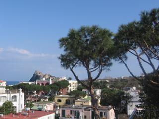 Ischia, appartamento in villa, terrazzo panoramico - Ischia Porto vacation rentals