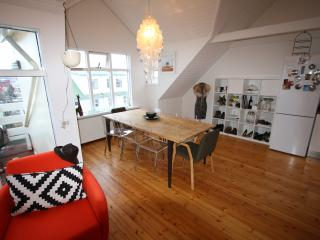Downtown amazing penthouse with a balcony - Reykjavik vacation rentals