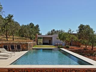 Cas Fina- Modern house quiet pool great location - Santa Eulalia del Rio vacation rentals