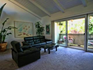 LUXURY European-pools, spas, tennis - Los Angeles vacation rentals