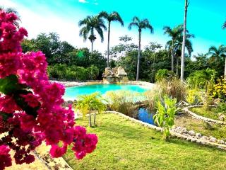Charming Countryside Chalet - Apartment 3 - Puerto Plata vacation rentals