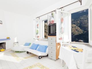 Acquamarina - Positano vacation rentals