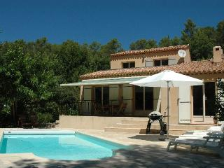 4 bedroom Villa with Television in Montfort-sur-Argens - Montfort-sur-Argens vacation rentals