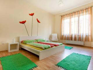 Perfect Condo with Internet Access and Television - Budapest vacation rentals