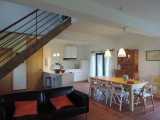 Quinta Rio de Oliveira - Casa da Fonte - Tabua vacation rentals