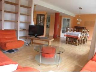 Apartment/ flat - Briancon Serre Chevalier - Briançon vacation rentals