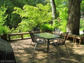 7149 Maple Avenue - Southwest Michigan vacation rentals