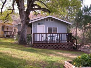 Cabin 5 under the Oak - Three Rivers vacation rentals