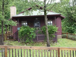 Bluff View Cabin - Mountain View vacation rentals